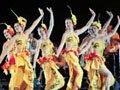 智利巴夫齐国家舞蹈团