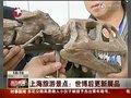 视频:旅游景点更新展品 恐龙化石落户科技馆