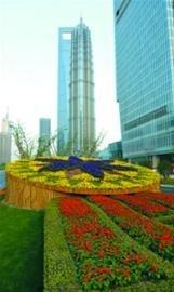 千万盆鲜花扮靓上海 11条世博道尽显海派风格