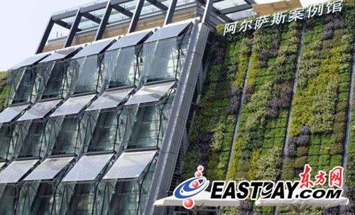 植物墙植物_上海植物墙_人造植物墙新闻