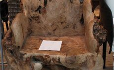 世博园50款创意椅子秀