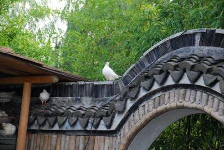上海最大庄园主的奢华生活(图)