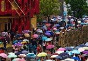 500万:开园第23天 适宜的气候使参观者游兴大增