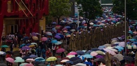 世博园迎最大风雨日 单日客流超36万再创新高