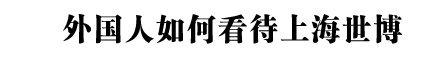 外国人如何看待上海世博