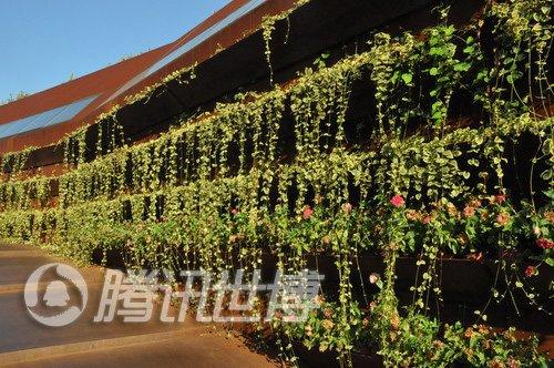 卢森堡馆邀灾区孩子逛世博 画下心中的上海