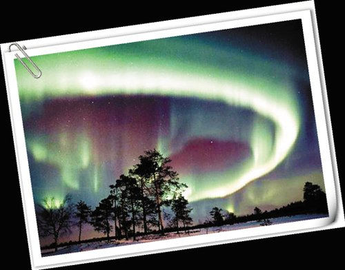 挪威馆神秘园免费演2场 馆内可看神秘极光