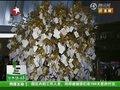 视频:新加坡馆黄色许愿树 游客许愿生活美好