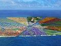 高清:荷兰科学家要用太平洋塑料垃圾建小岛