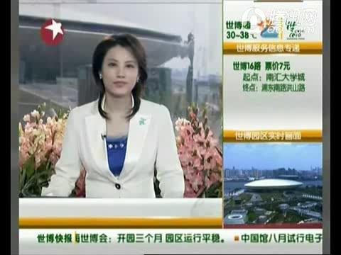 视频:中国馆将启用电子预约券 增强防伪功能