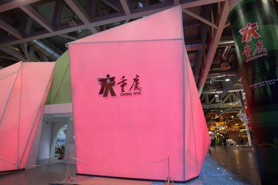 上海的发展经验对很多城市都有借鉴作用