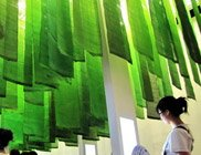世博让绿色革命、低碳经济、新能源产业大行其道