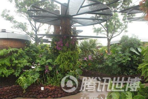 新加坡馆通风外墙飘音乐 空中花园吸光降温