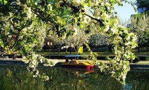 亩中山水园:传统与现代结合打造另类中国风