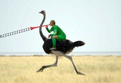 荷兰翘臀门将惨被玩坏:骑范佩西 美女背靠背