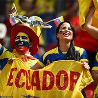 厄瓜多尔美女球迷惊艳全场