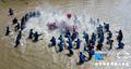 """漳州""""泼水节"""":村民抬神像下河泼水狂欢"""