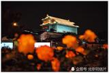 实拍初夏时节北京 花团锦簇夜色撩人