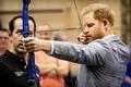 """""""不屈不挠""""运动会明年举办 哈里王子荷兰体验比赛项目"""