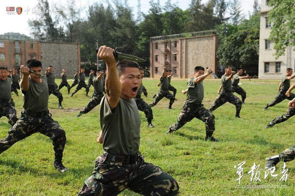 武警特警学院 第722特种部队 -中国陆军特种部队图片
