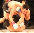 日本拳王遭裸绞降服
