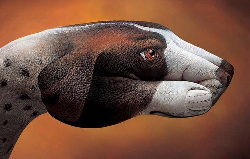 艺术奇葩 油画家手上画出 动物世界 高清图片