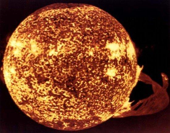 我们自己是太阳卡卡龙谱子