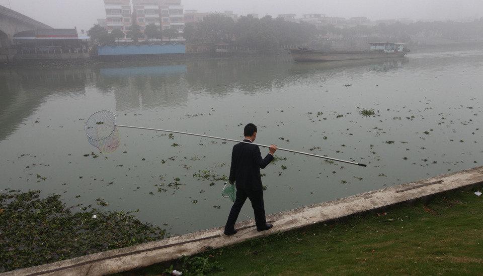 一位拿着渔兜的男子在水葫芦边行走