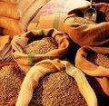 品�|生活 �囊活w咖啡豆�_始