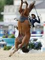 高清:人仰马翻 现代五项比赛韩国选手坠马