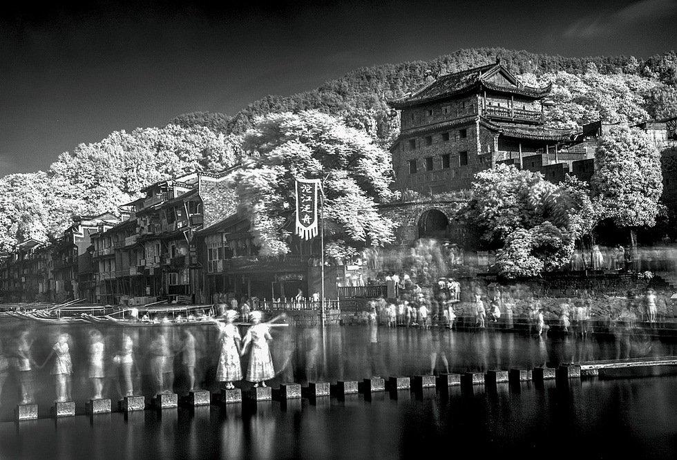 红外看凤凰(组4)-李林