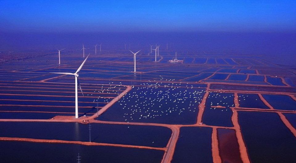 """""""文明生态 美丽中国""""摄影大展 - 大漠孤烟 - 大漠孤烟"""