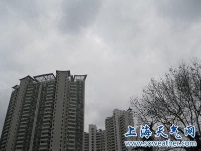 申城昨天17.3℃明天降回9℃ 今下午或有轻霾 - 秋雨 - 秋雨的博客