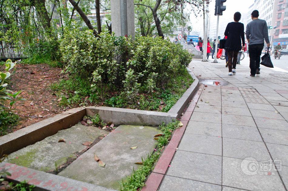 3月24日,株洲石宋路工业大学河东校区门口外的路旁,一个水泥井盖
