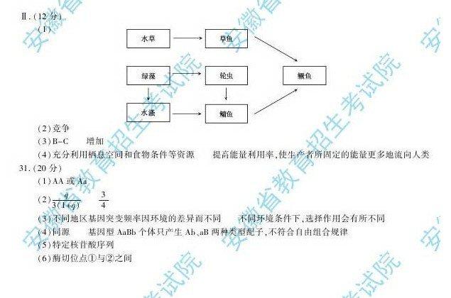 安徽高考理综试题答案4