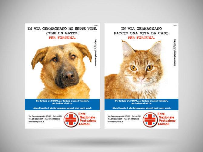 公益广告:拿什么拯救动物