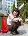 日本C84同人展COS集:兔女郎卖萌 御姐秀气场