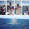 组图:安东尼全家出海 甜瓜用手钓鱼娇妻拍鲸