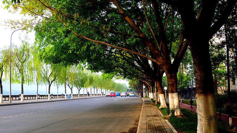 四川最美街景-绵阳市滨河路-高清 四川最美街景 50强名单出炉图片