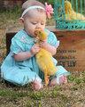 孩子与动物互咬
