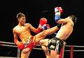 中国选手踹晕泰拳王