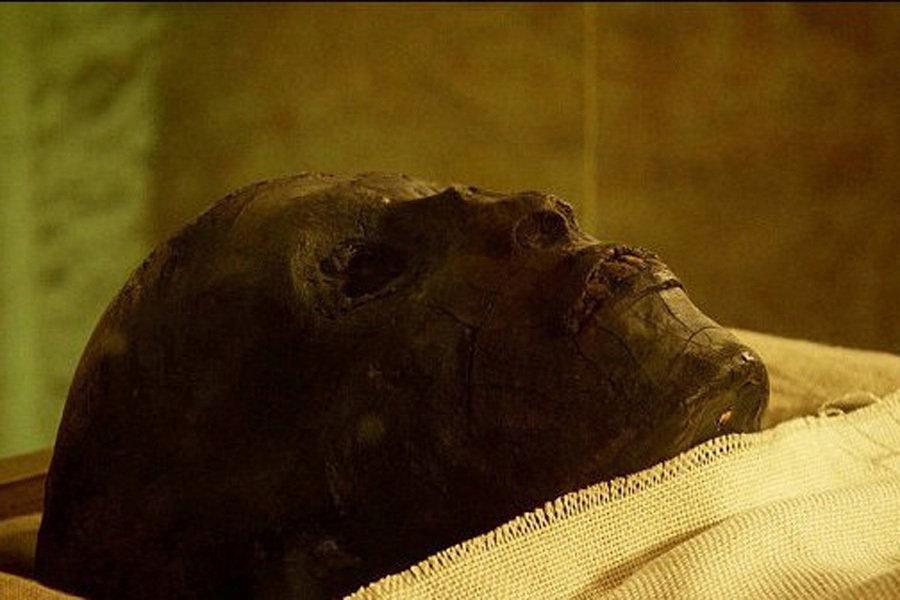科学家发现埃及最年轻法老死因 战车碾压致死图片
