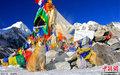 印度流浪狗随新主人登珠峰 已抵达5364米营地