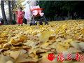 http://img1.gtimg.com/xian/pics/hv1/96/243/1550/100850811.jpg