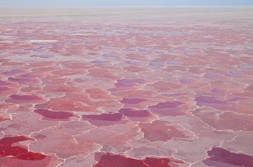 最奇特的_卫星拍摄的地球表面 色彩斑斓若一幅幅水彩画