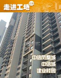 184安阳东区楼盘12月施工进度 width=