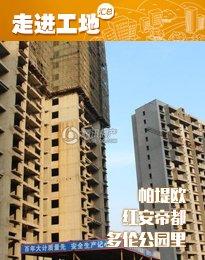 191安阳东区楼盘2月施工进度 width=