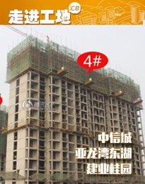 安阳东区3月工程进度 width=