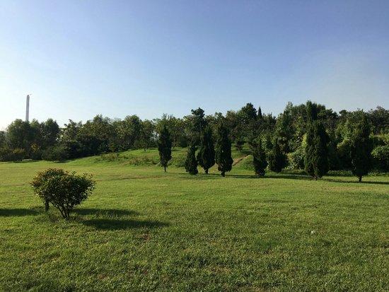 安阳人注意啦!这个200亩的公园你去过吗?