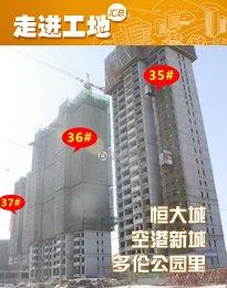 安阳公园地产5月施工进度 width=